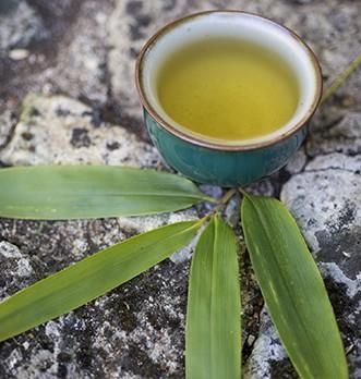 Quesque le thé vert