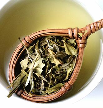 Vertus du thé blanc