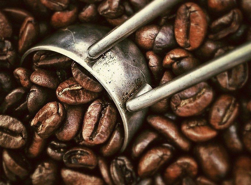 Origine du café
